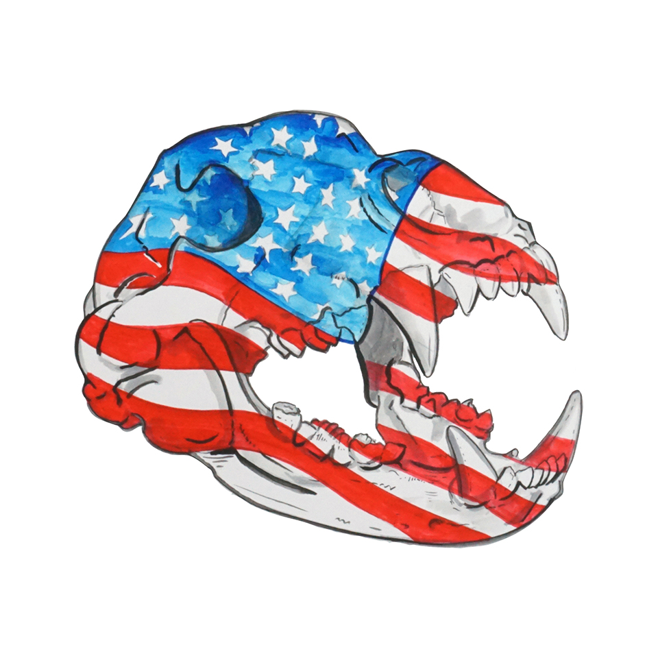 Bear Skull - USA Flag