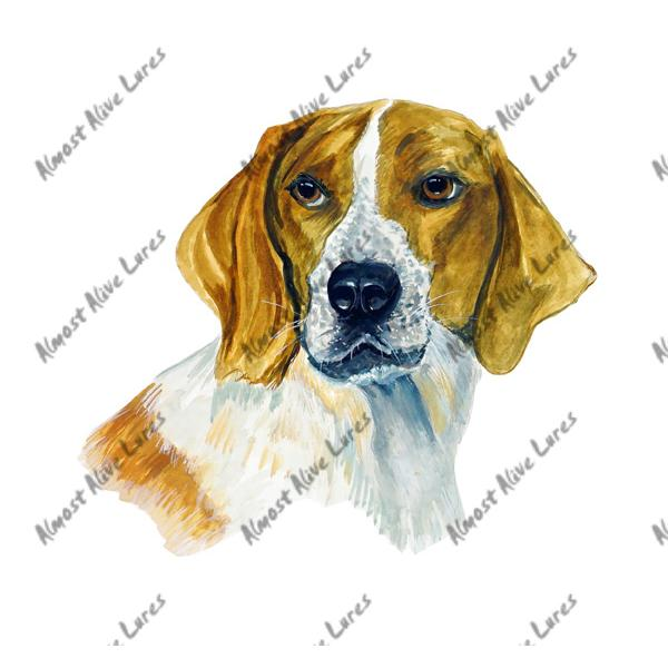 Beagle Fox Hound - Printed Vinyl Decal