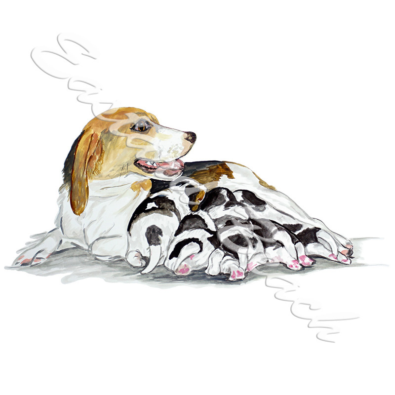 Beagle & Puppies - Printed Vinyl Decal