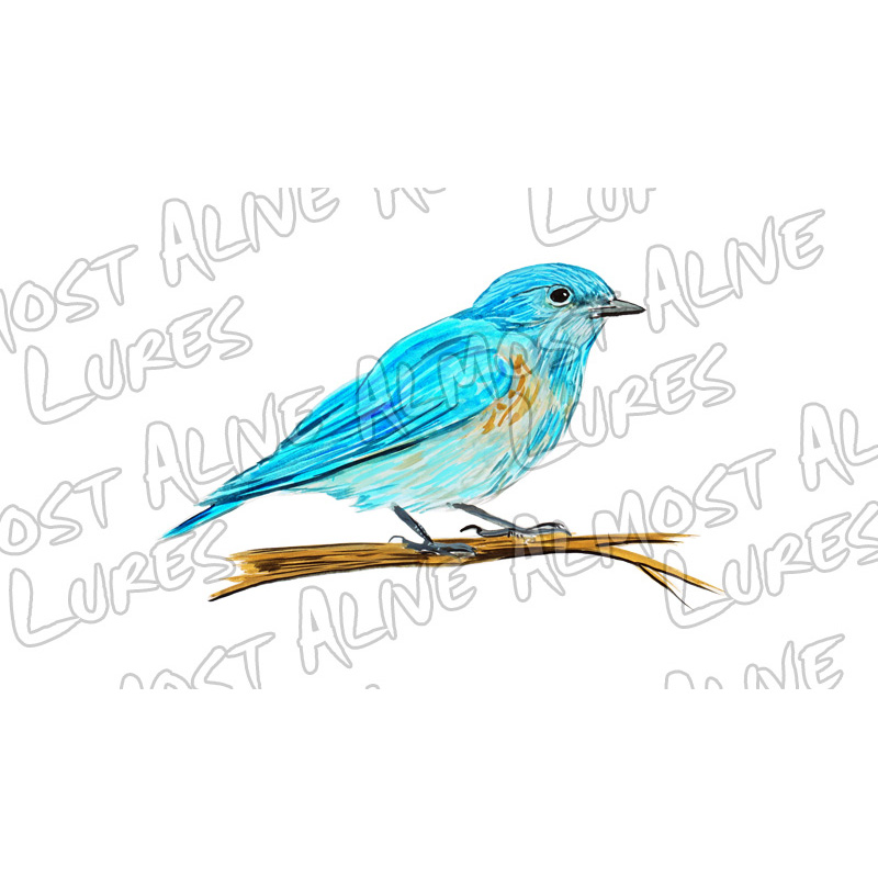 Bluebird - Printed Vinyl Decal