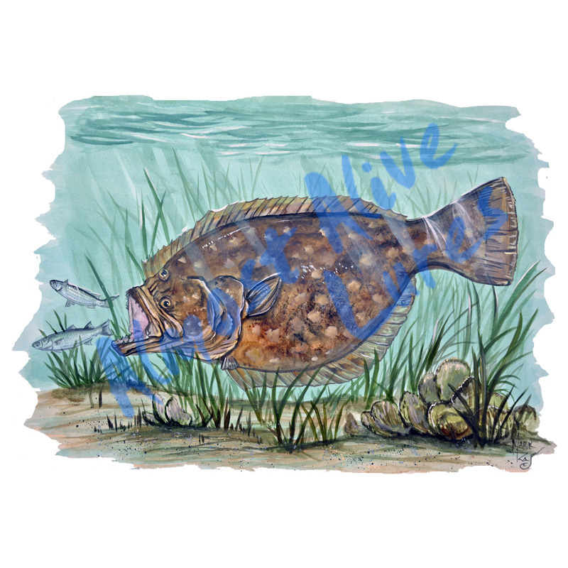 Flounder In Grass - Printed Vinyl Decal