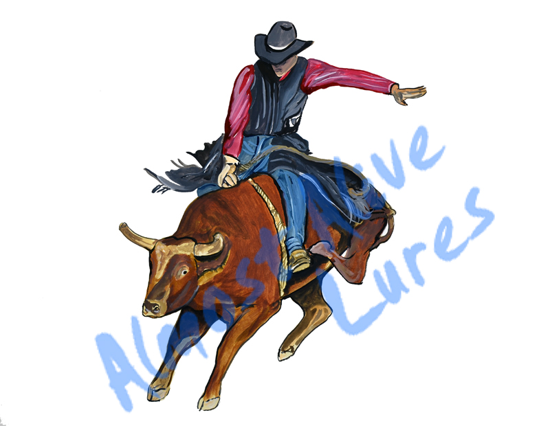 Bullrider - Printed Vinyl Decal