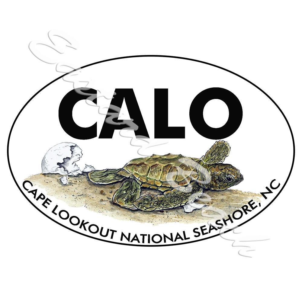 CALO - Cape Lookout Turtle Hatchling - Printed Vinyl Decal