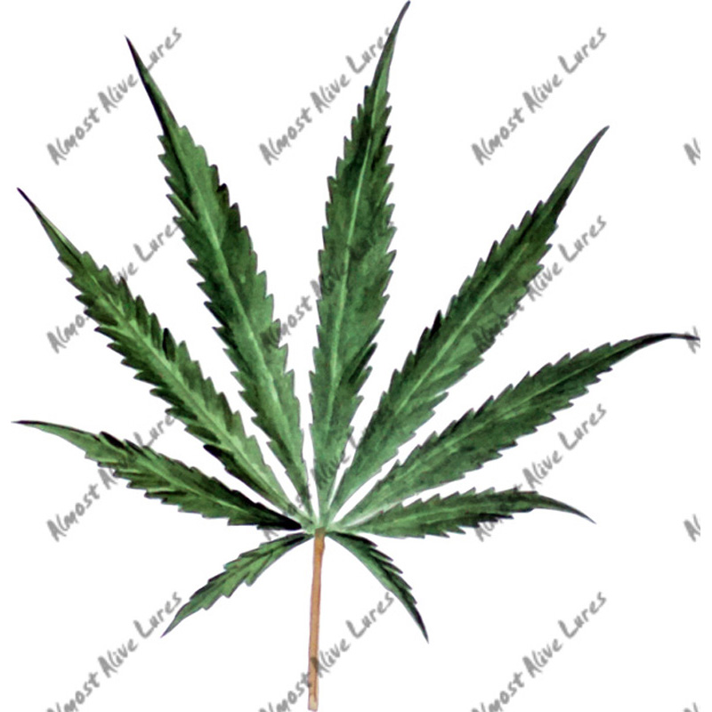 Cannibus Leaf - Printed Vinyl Decal