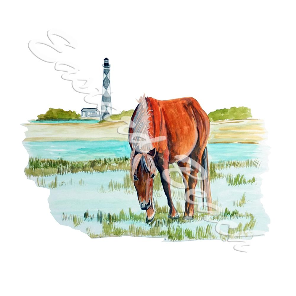 Cape Lookout Horse