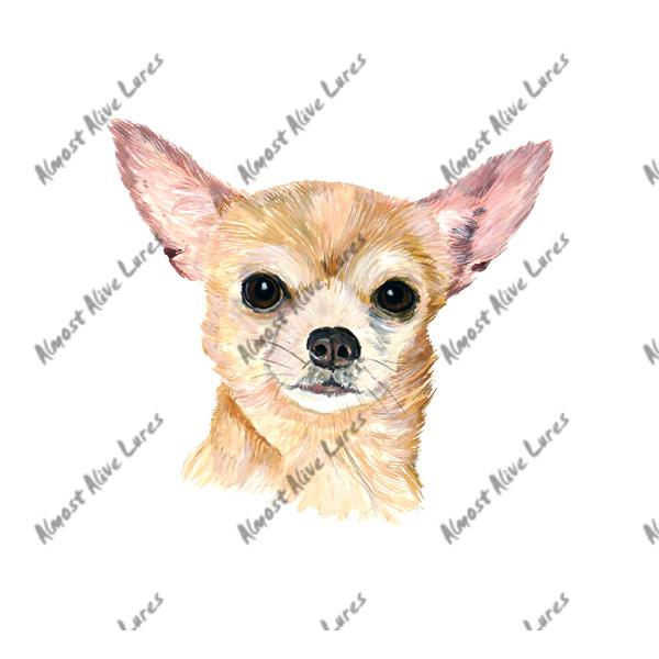 Chihuahua - Printed Vinyl Decal