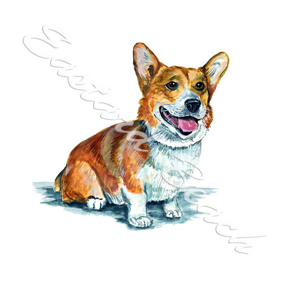 Pembroke Welsh Corgie - Printed Vinyl Decal