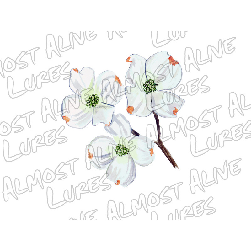 Dogwood - Printed Vinyl Decal