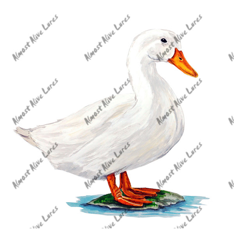 Pekin Duck - Printed Vinyl Decal