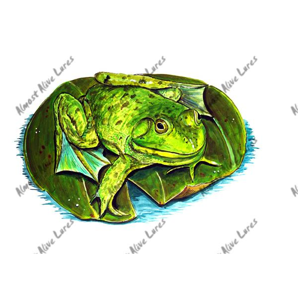 Frog On A Lily Pad - Printed Vinyl Decal