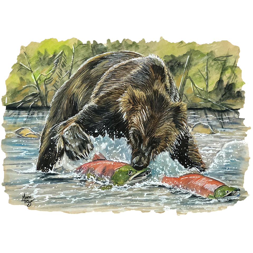 Bear eating fish