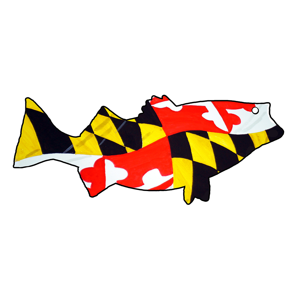 Maryland Flag Striped Bass