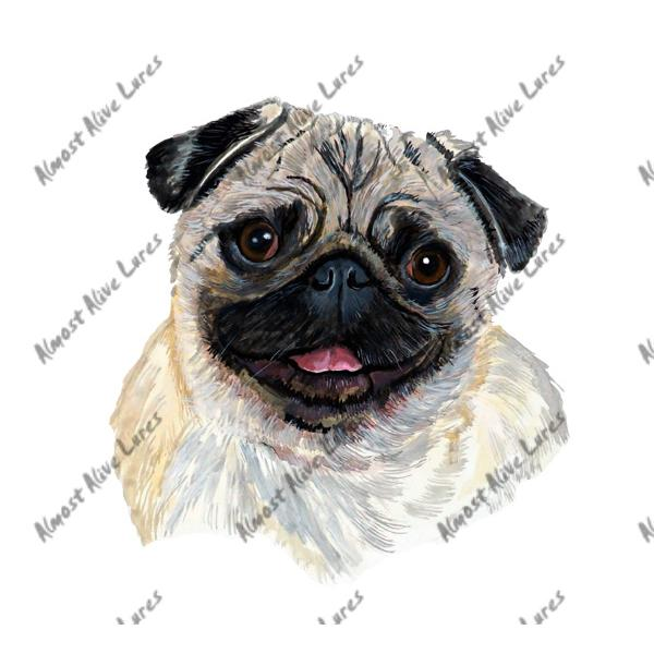 Fawn Pug Portrait - Printed Vinyl Decal
