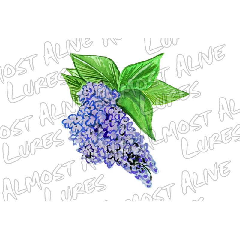 Purple Lilac - Printed Vinyl Decal