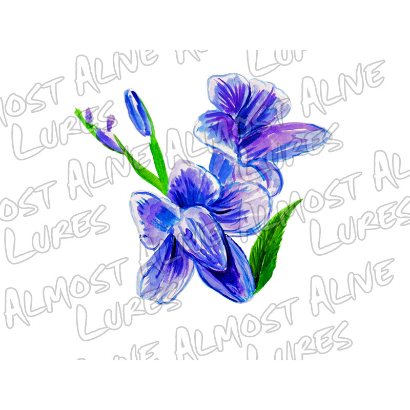 Purple Violet - Printed Vinyl Decal