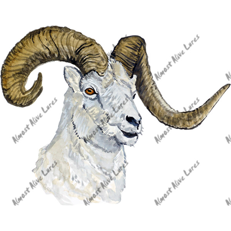 Ram - Printed Vinyl Decal