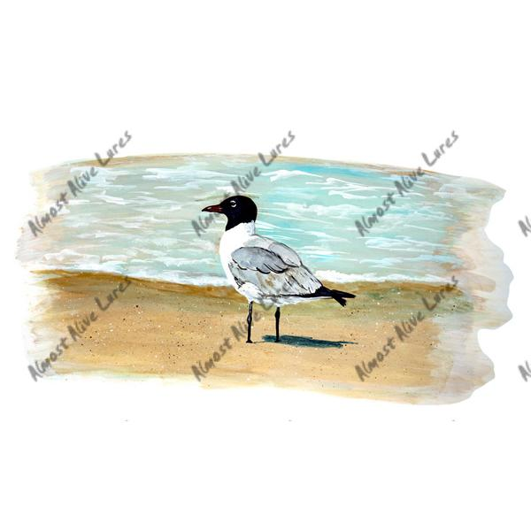 Laughing Sea Gull - Printed Vinyl Decal