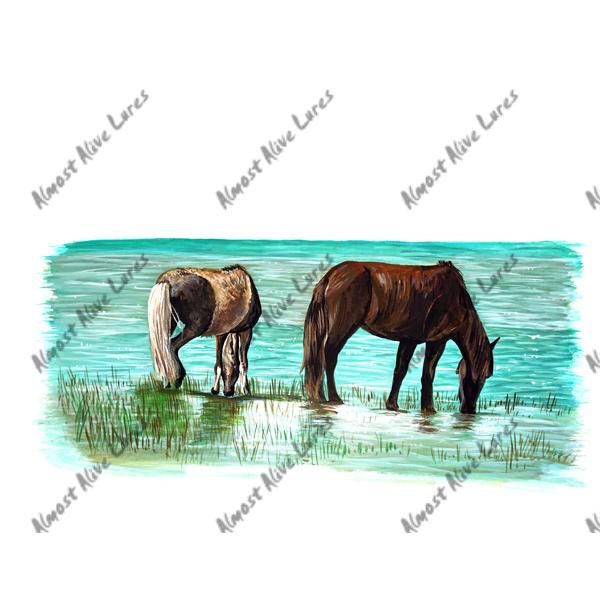 Outer Banks Banker Ponies - Printed Vinyl Decal