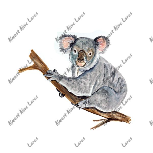 Koala - Printed Vinyl Decal