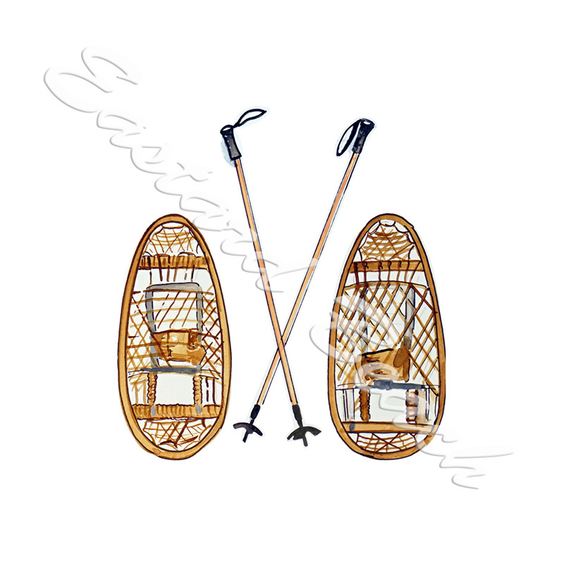 Snow Shoes & Poles