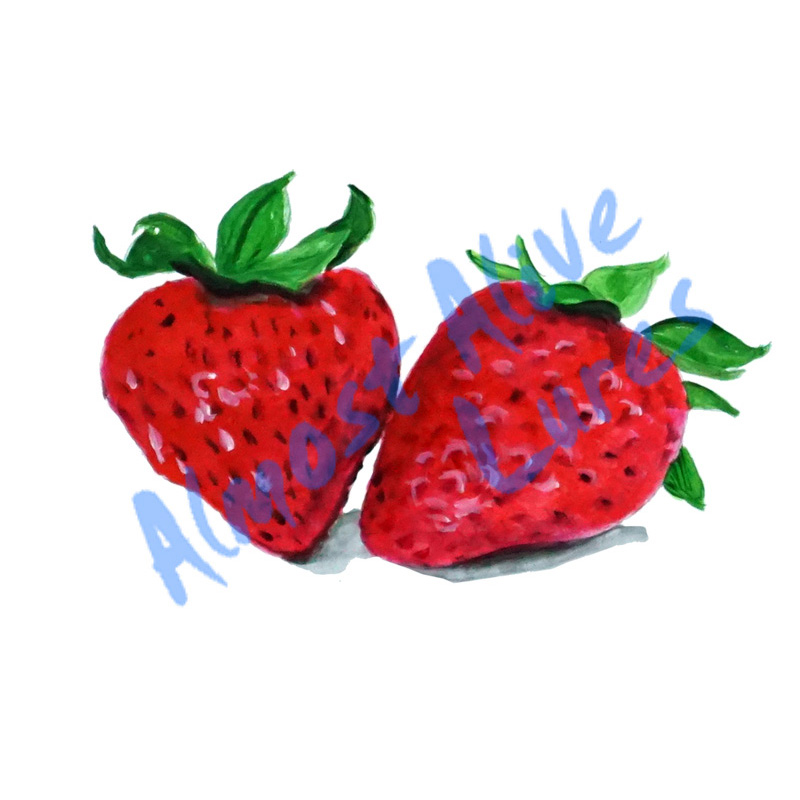 Strawberries - Printed Vinyl Decal