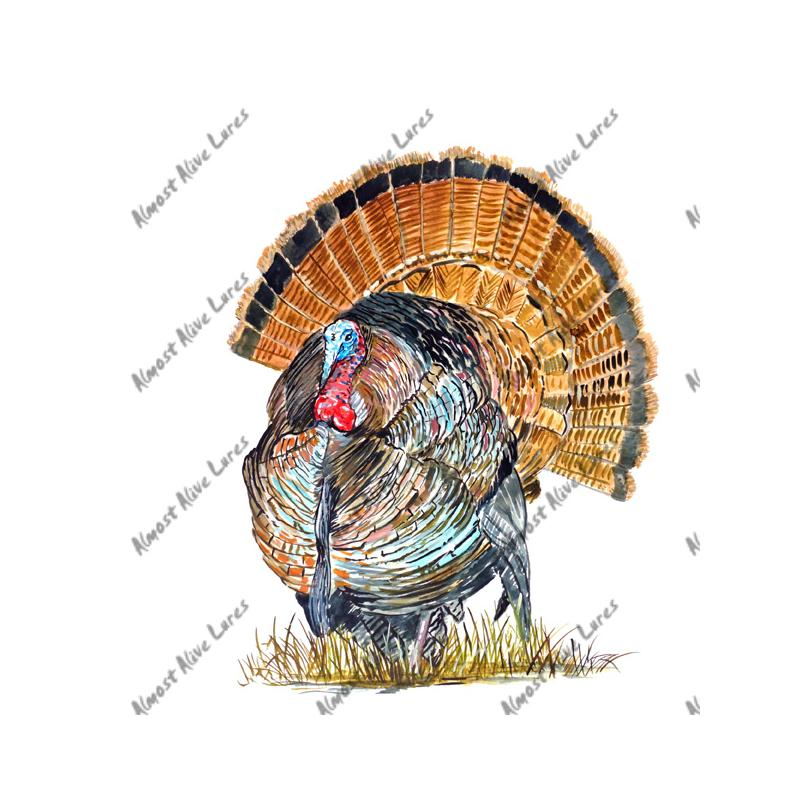 Wild Turkey - Printed Vinyl Decal