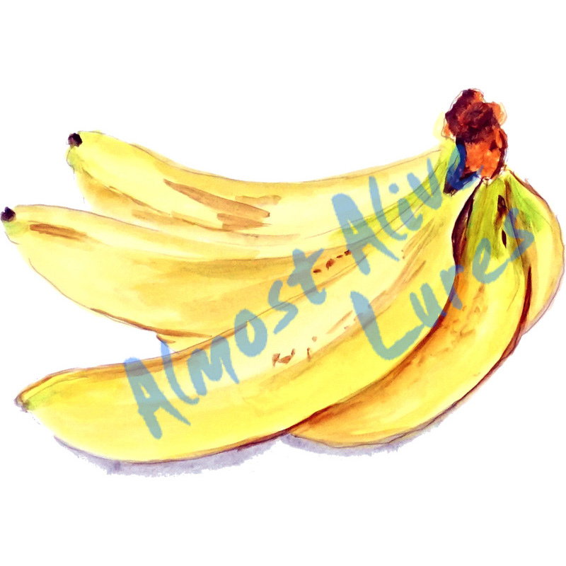 Bananas - Printed Vinyl Decal
