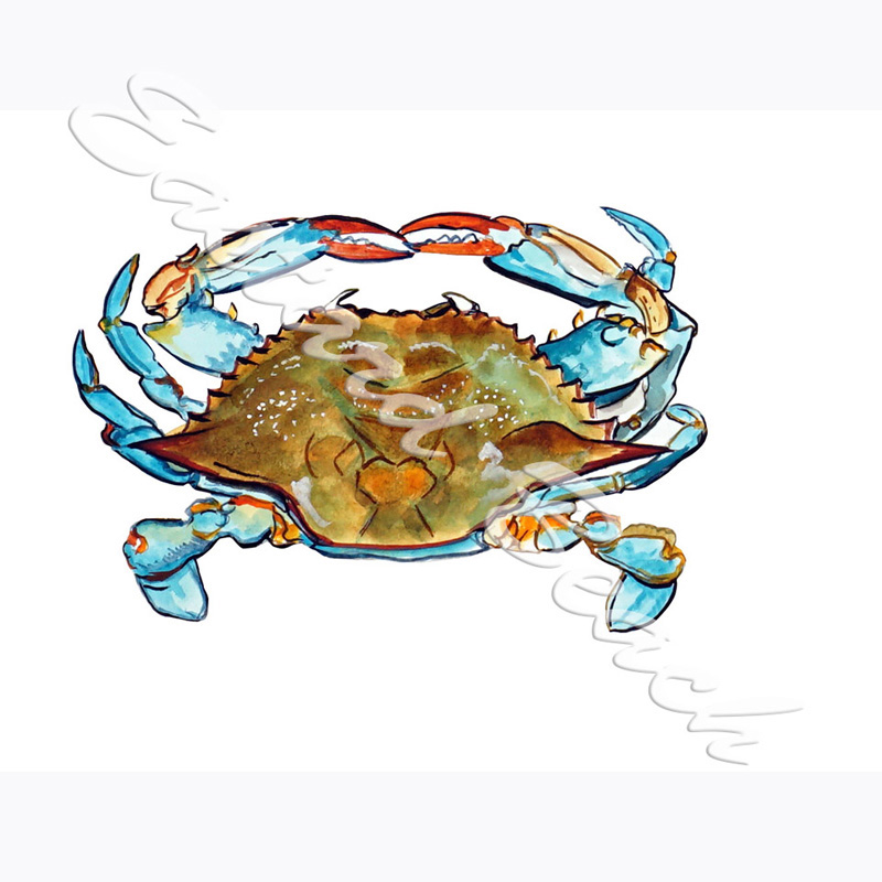 Blue Crab - SUP to **STK700**