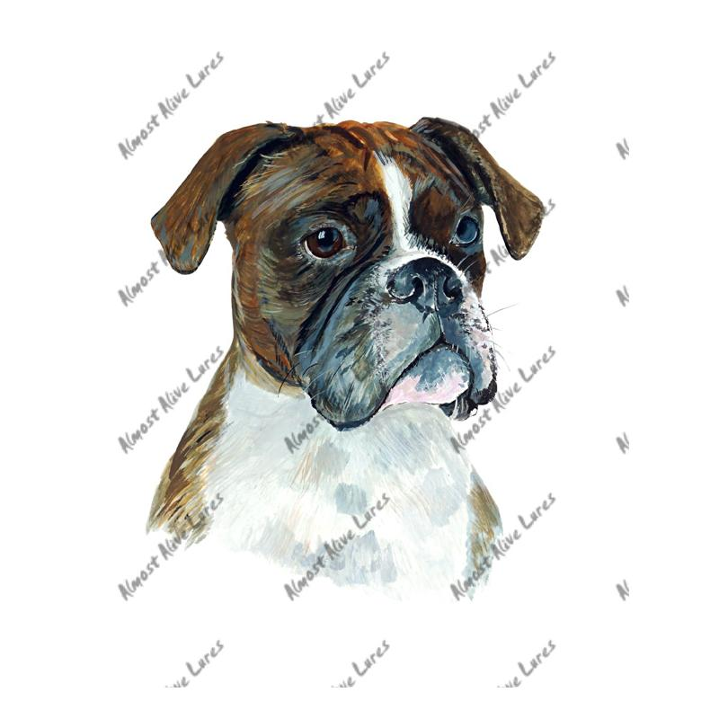 Boxer - Printed Vinyl Decal