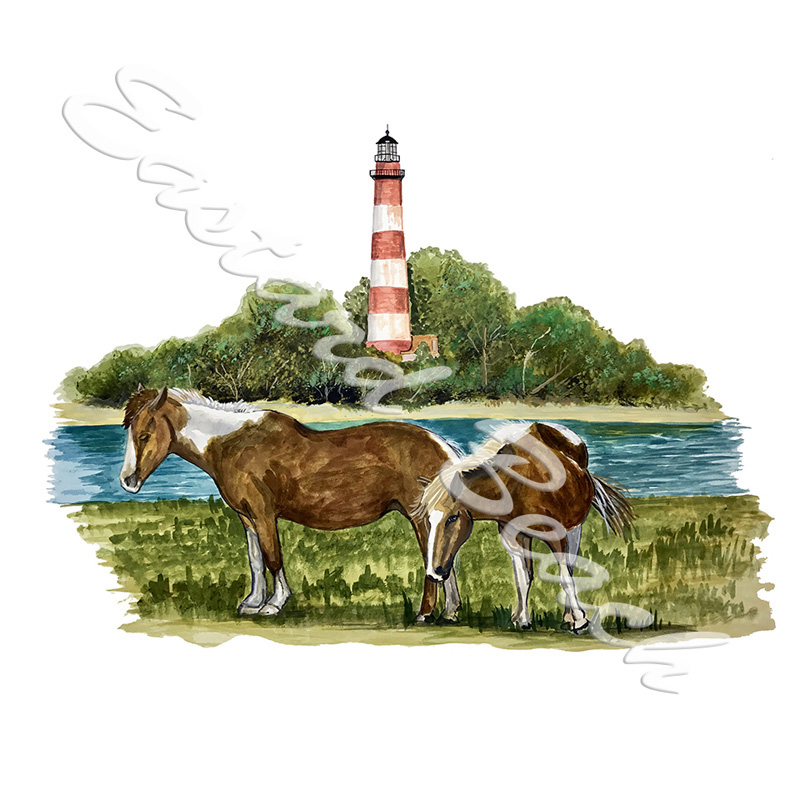 Chincoteague Ponies - Printed Vinyl Decal
