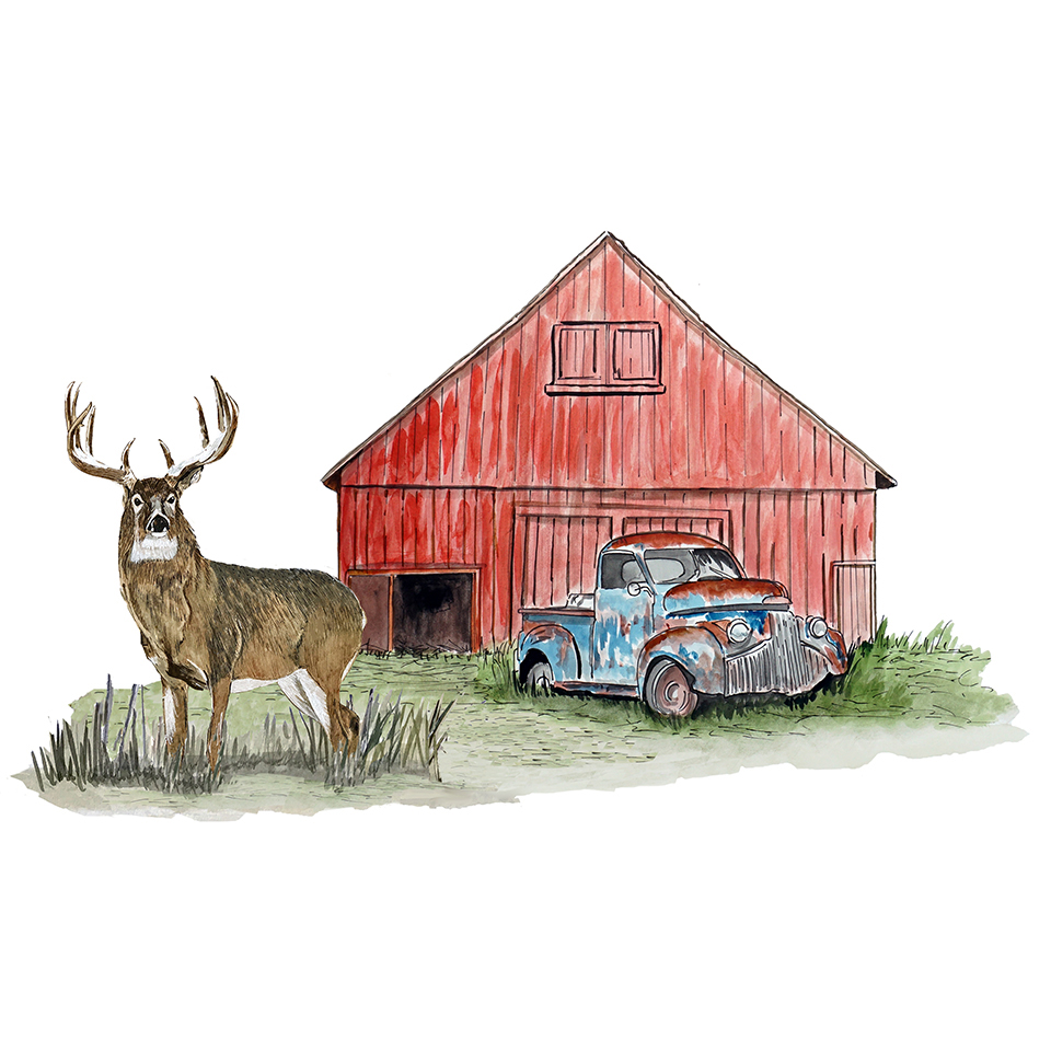 Deer and Barn