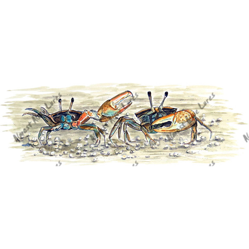 Fiddler Calling Crabs - Printed Vinyl Decal