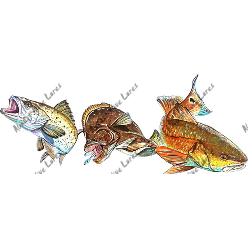 Inshore Slam - Drum, Trout and Flounder Decal