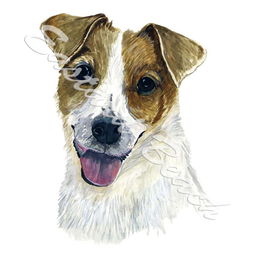 Jack Russell Terrier - Printed Vinyl Decal