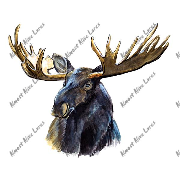 Moose - Printed Vinyl Decal