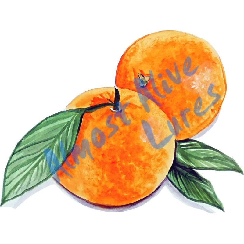 Oranges - Printed Vinyl Decal