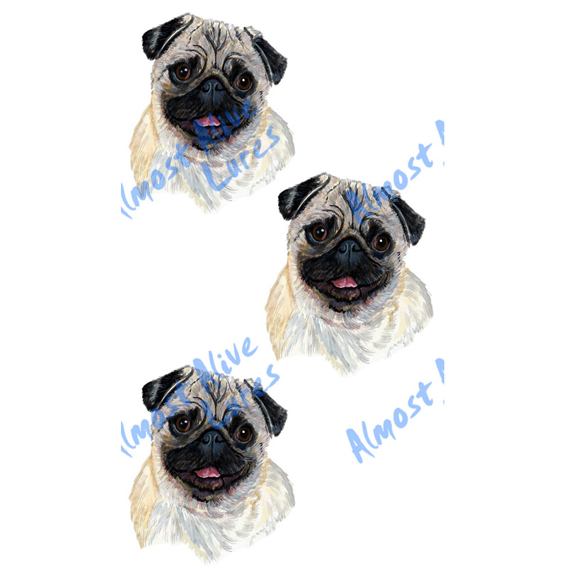 Blonde Fawn Pug - Minis Set of 3 Printed Vinyl Decals