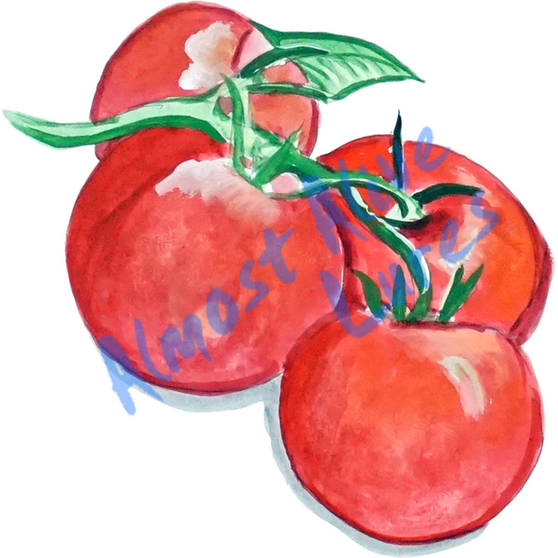 Tomatoes - Printed Vinyl Decal